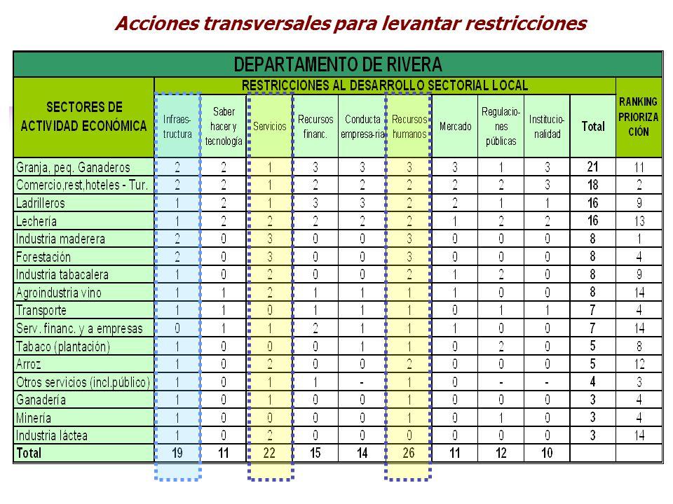 Acciones transversales para levantar restricciones