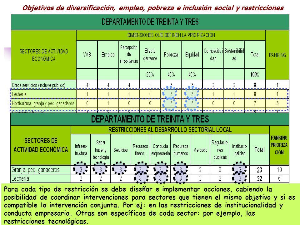 Objetivos de diversificación, empleo, pobreza e inclusión social y restricciones