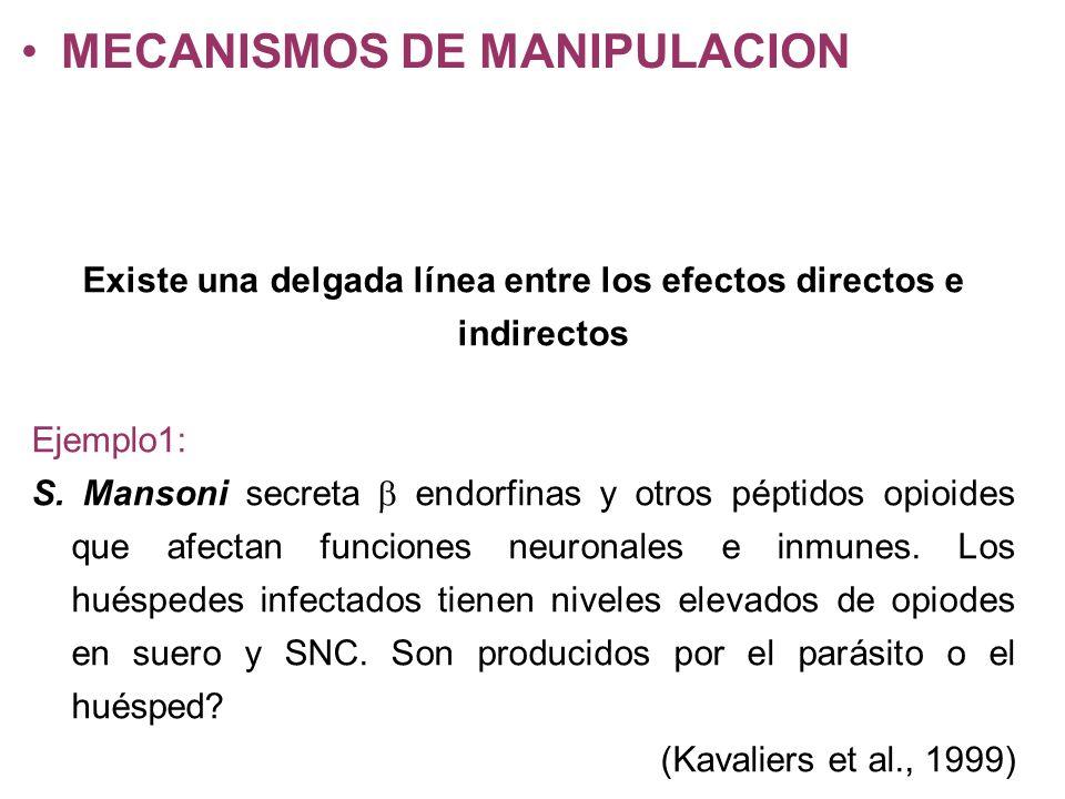 Existe una delgada línea entre los efectos directos e indirectos