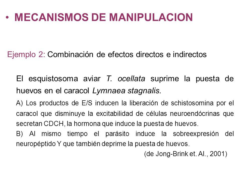 MECANISMOS DE MANIPULACION