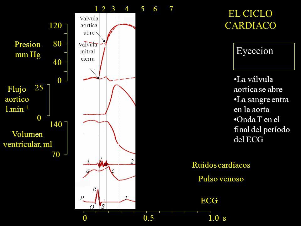 EL CICLO CARDIACO Eyeccion 120 80 Presion 40 mm Hg