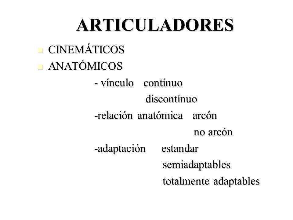 ARTICULADORES CINEMÁTICOS ANATÓMICOS - vínculo contínuo discontínuo