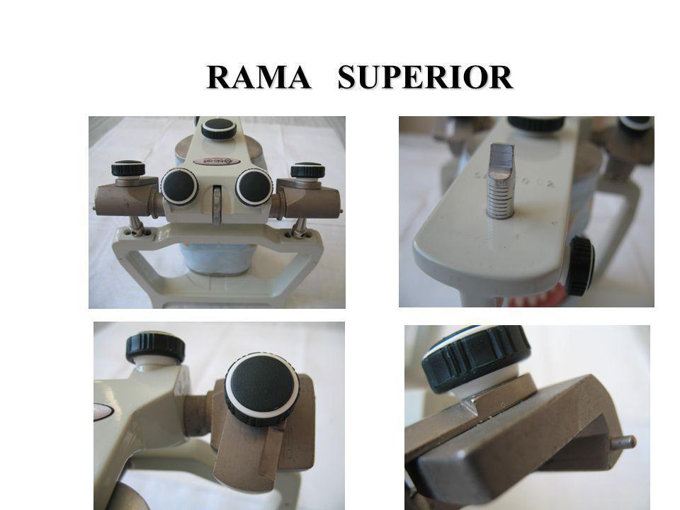 RAMA SUPERIOR