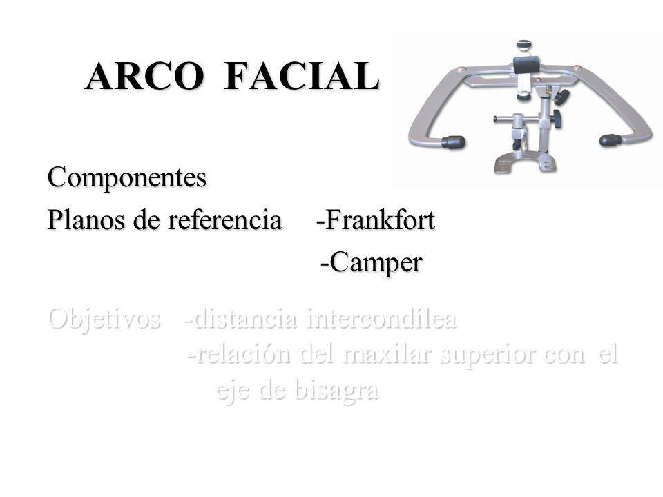 ARCO FACIAL Componentes Planos de referencia -Frankfort -Camper