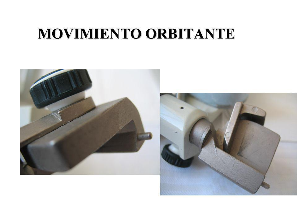 MOVIMIENTO ORBITANTE