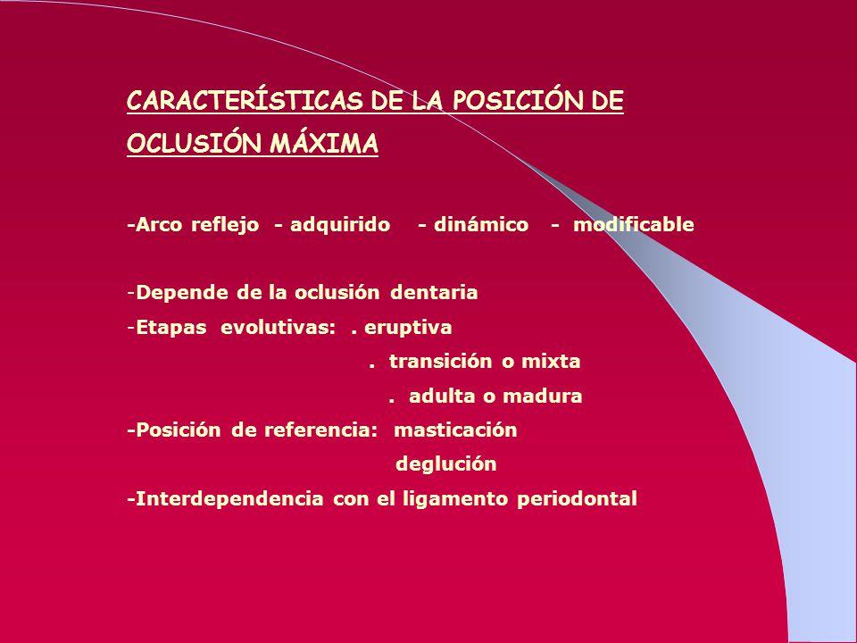 CARACTERÍSTICAS DE LA POSICIÓN DE OCLUSIÓN MÁXIMA