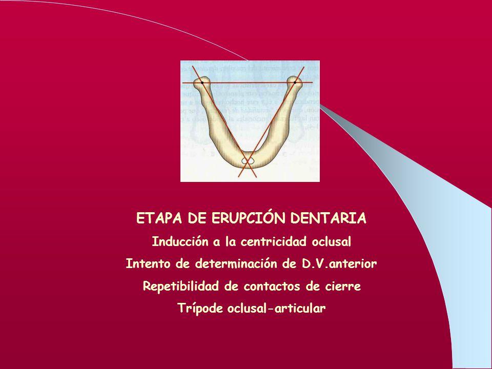 ETAPA DE ERUPCIÓN DENTARIA
