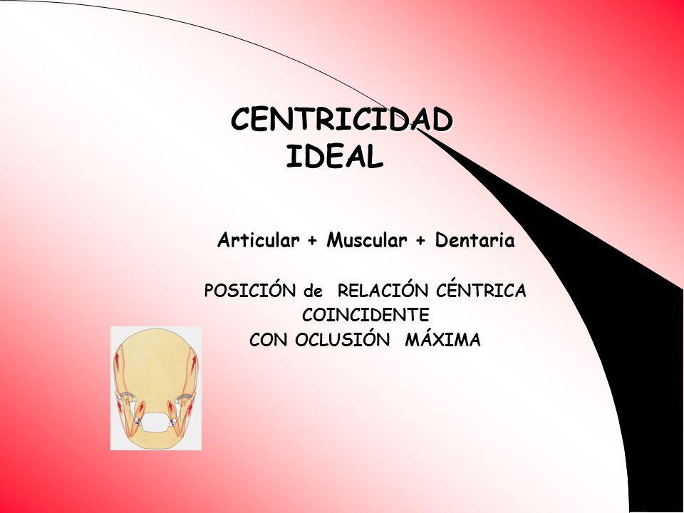 Articular + Muscular + Dentaria POSICIÓN de RELACIÓN CÉNTRICA