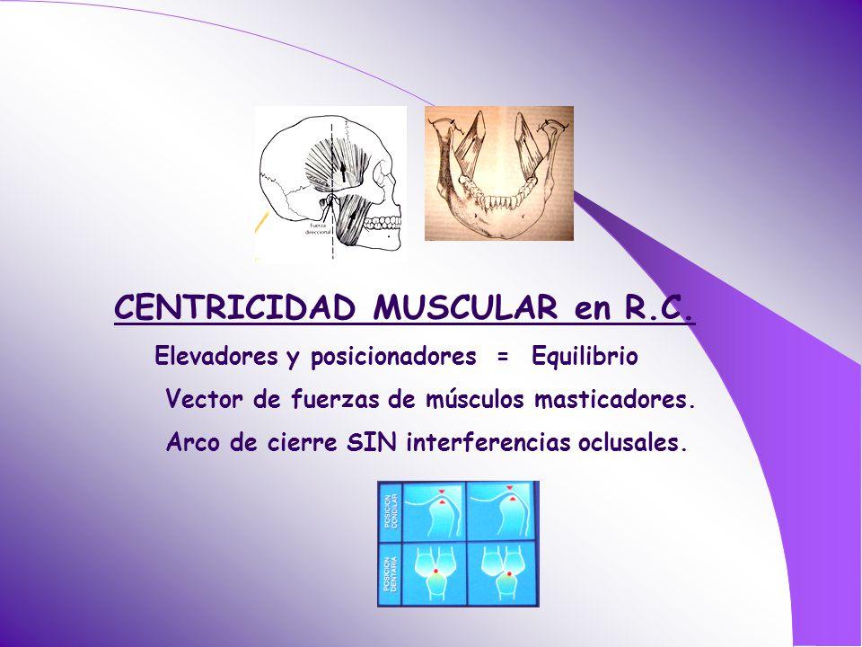 CENTRICIDAD MUSCULAR en R.C.