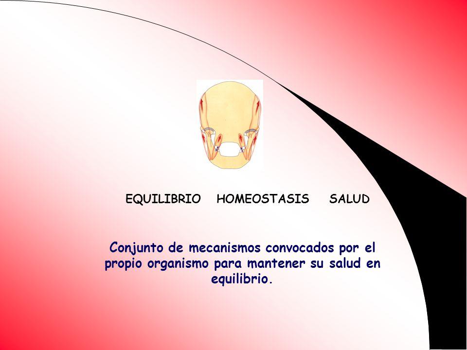 EQUILIBRIO HOMEOSTASIS SALUD