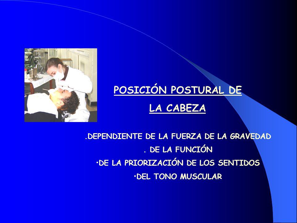 POSICIÓN POSTURAL DE LA CABEZA