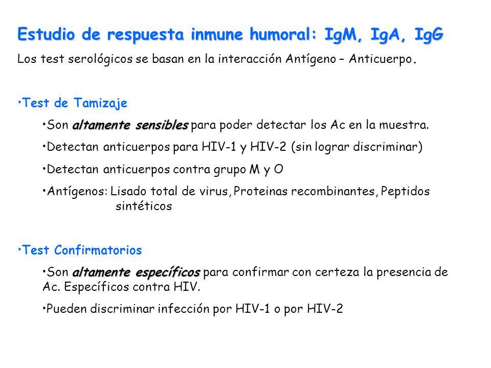 Estudio de respuesta inmune humoral: IgM, IgA, IgG