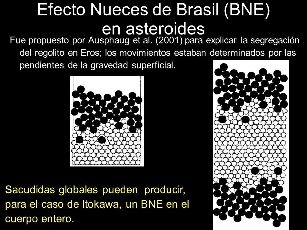 Efecto Nueces de Brasil (BNE) en asteroides