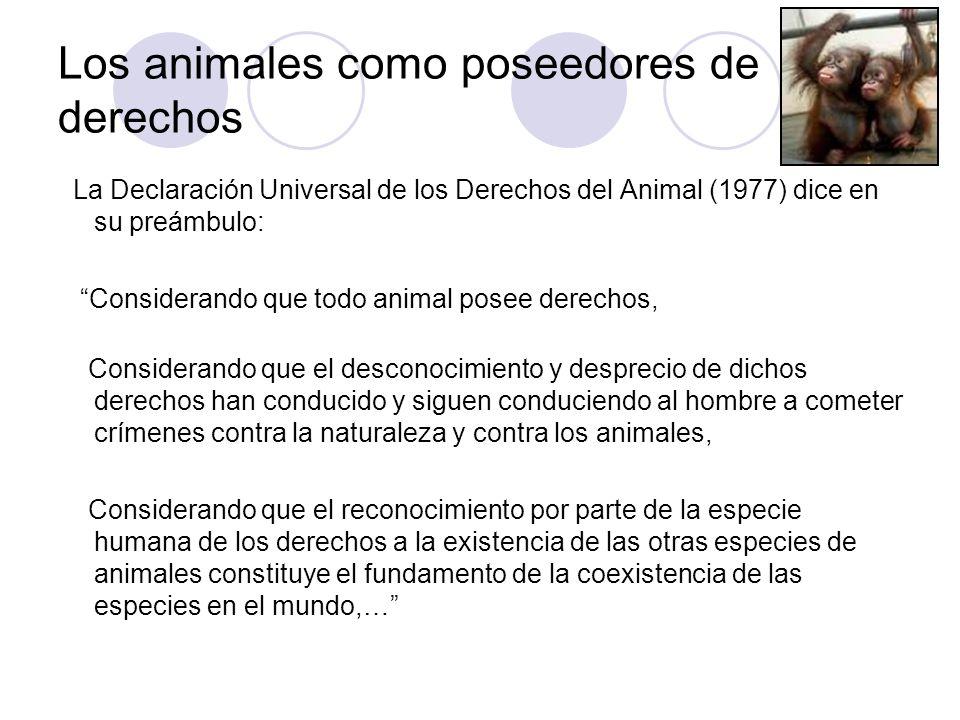 Los animales como poseedores de derechos