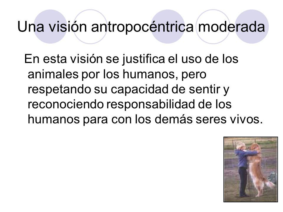Una visión antropocéntrica moderada
