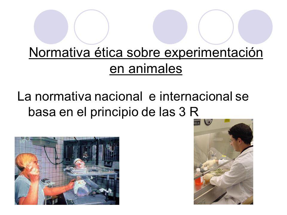 Normativa ética sobre experimentación en animales