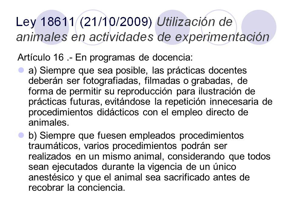 Artículo 16 .- En programas de docencia: