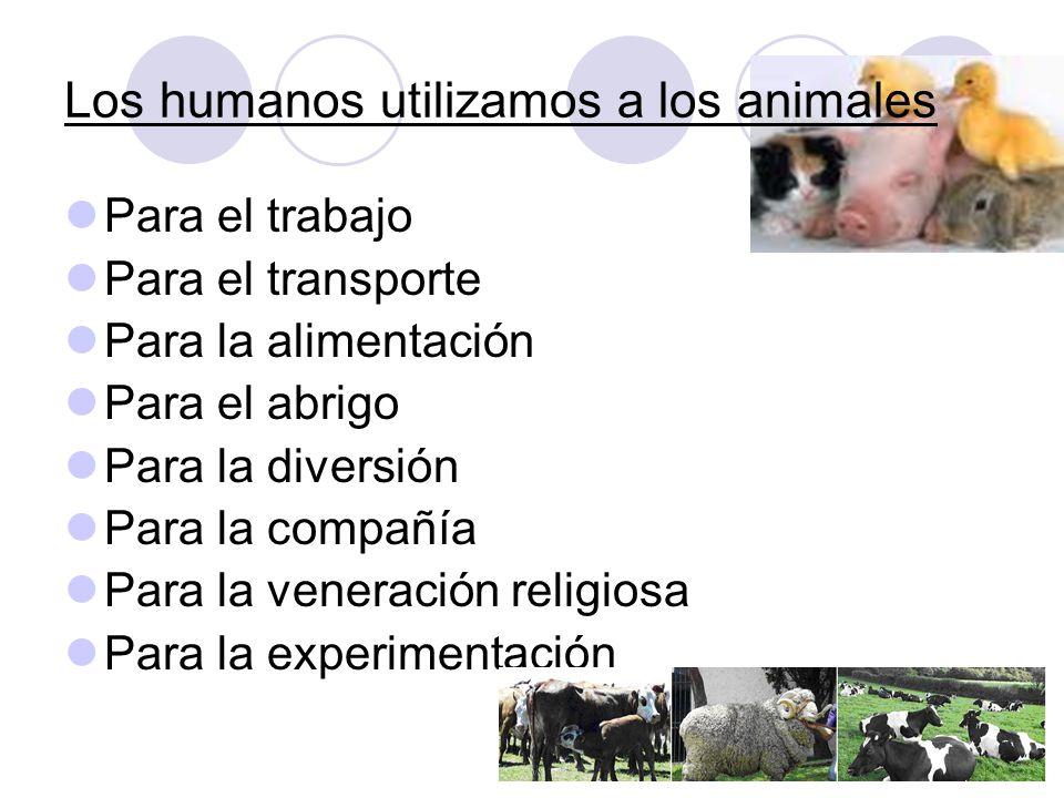 Los humanos utilizamos a los animales