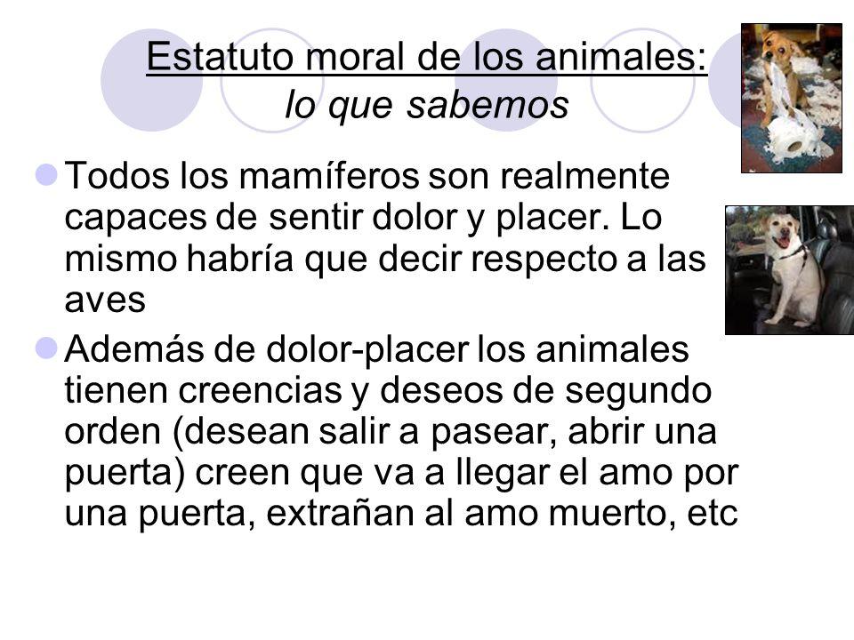 Estatuto moral de los animales: lo que sabemos