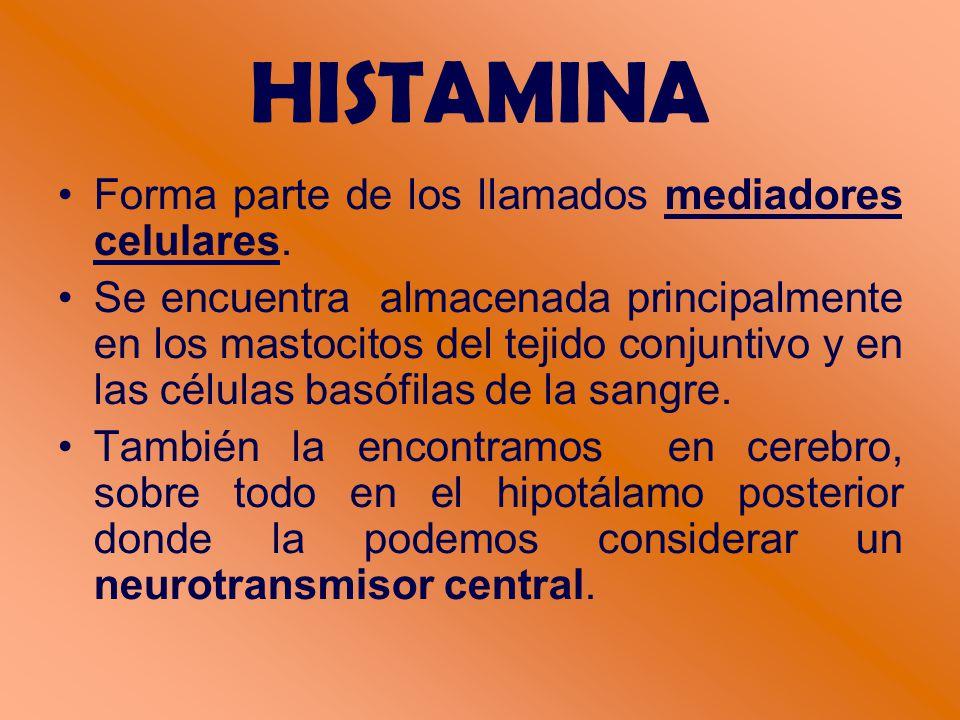 HISTAMINA Forma parte de los llamados mediadores celulares.