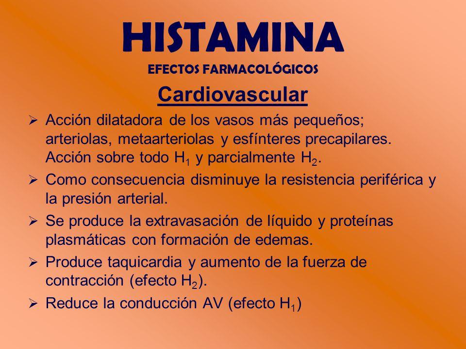 HISTAMINA EFECTOS FARMACOLÓGICOS