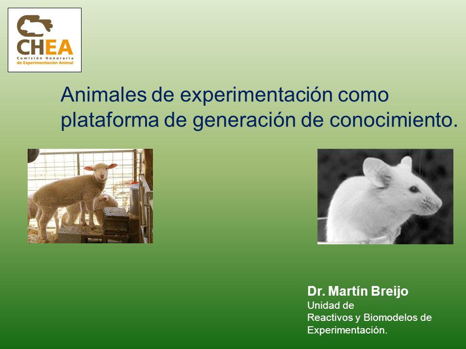 Animales de experimentación como plataforma de generación de conocimiento.