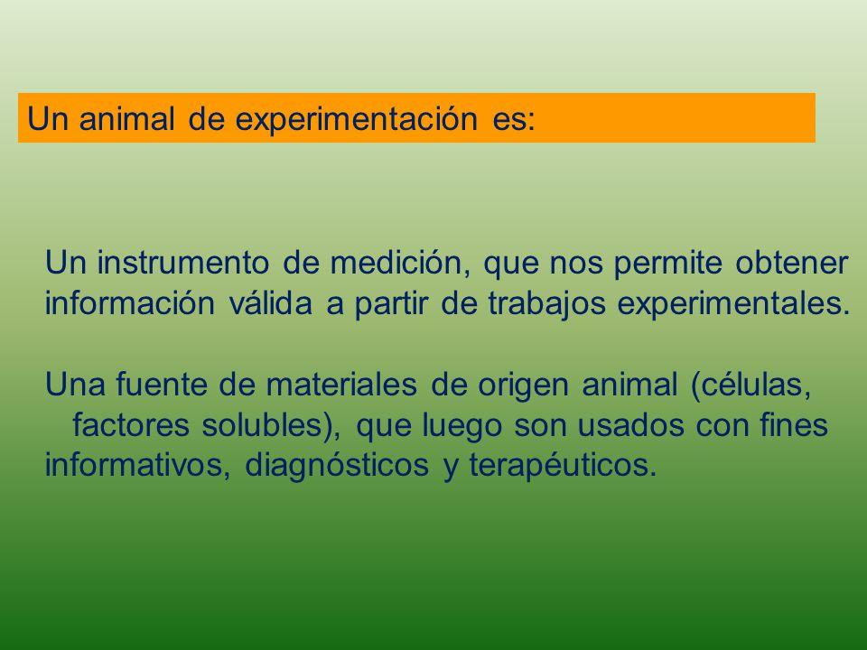 Un animal de experimentación es: