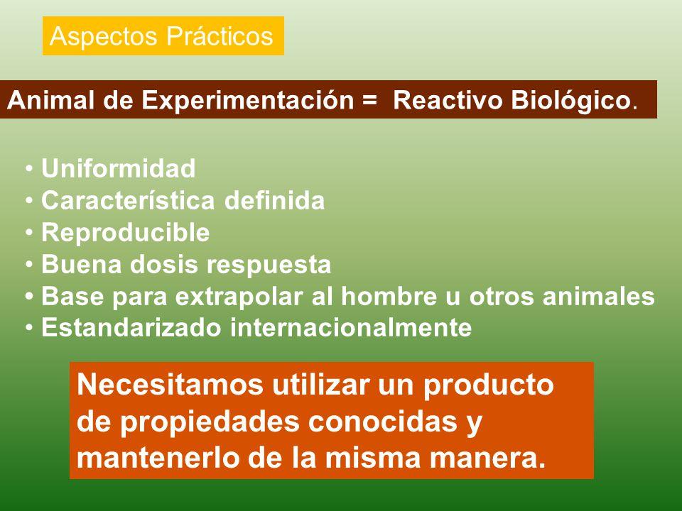 Aspectos Prácticos Animal de Experimentación = Reactivo Biológico. • Uniformidad. • Característica definida.