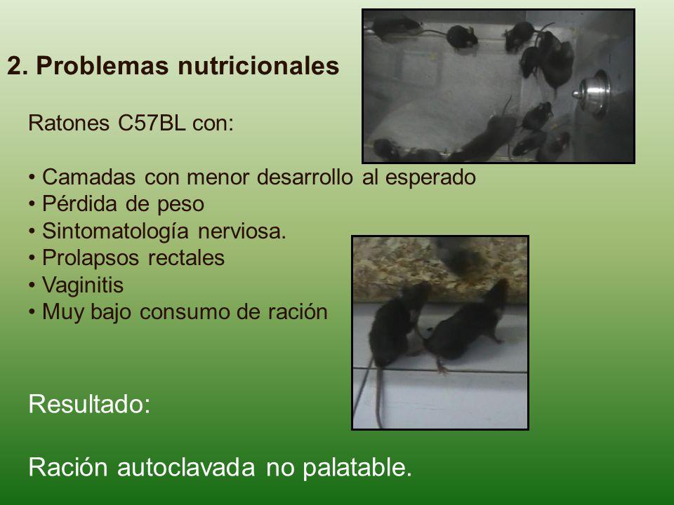 2. Problemas nutricionales