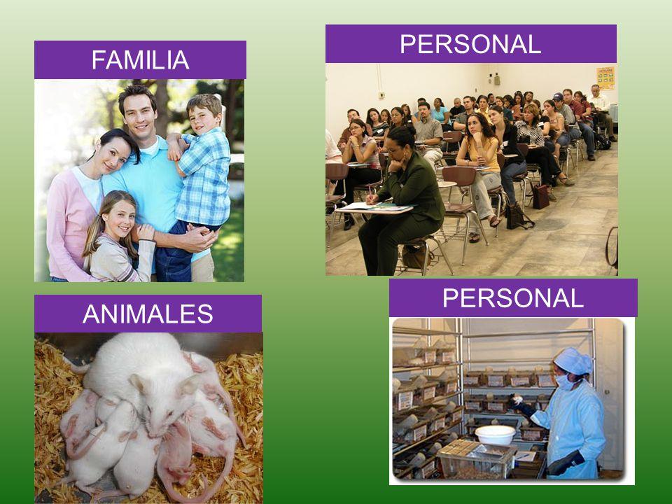 PERSONAL FAMILIA PERSONAL ANIMALES