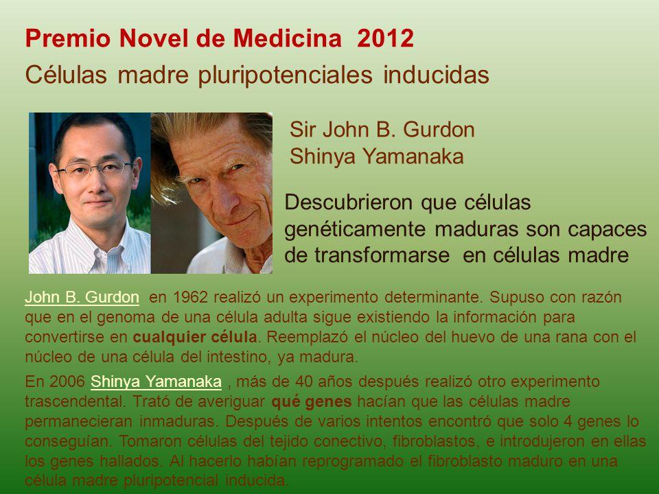 Premio Novel de Medicina 2012 Células madre pluripotenciales inducidas