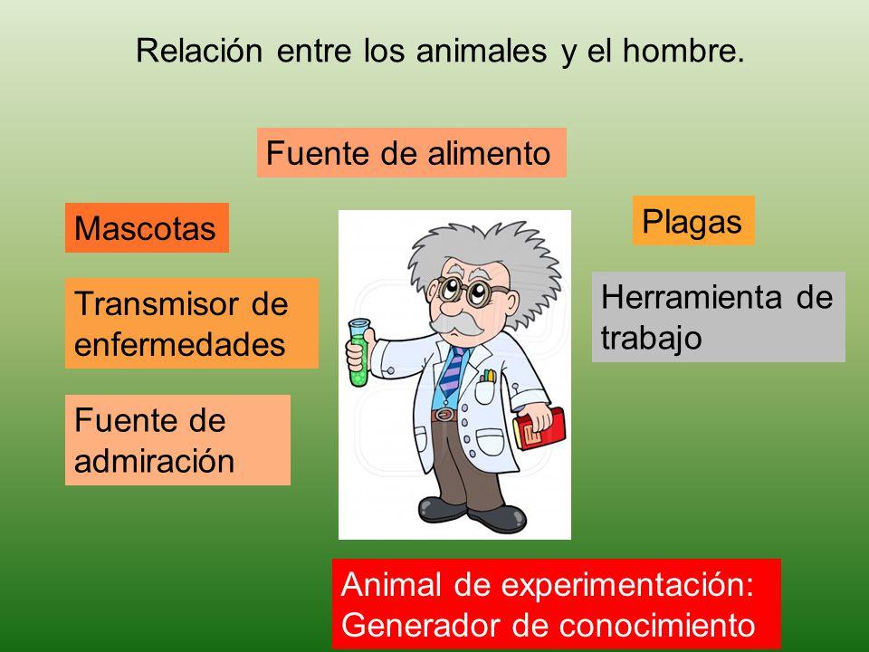 Relación entre los animales y el hombre.