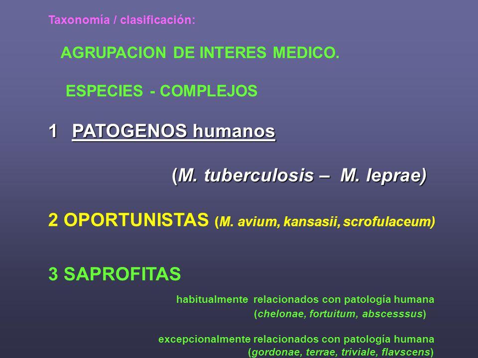 (M. tuberculosis – M. leprae)