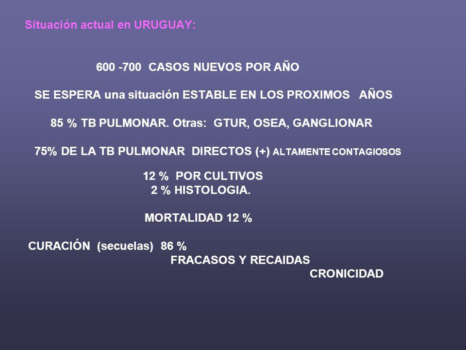 Situación actual en URUGUAY: 600 -700 CASOS NUEVOS POR AÑO SE ESPERA una situación ESTABLE EN LOS PROXIMOS AÑOS 85 % TB PULMONAR.