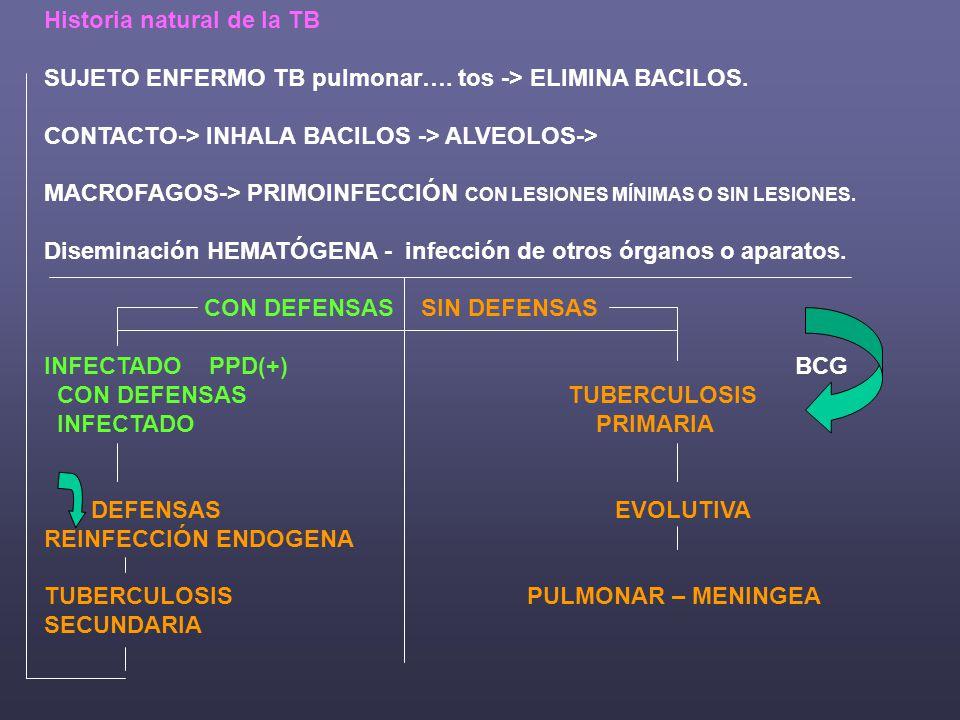 Historia natural de la TB