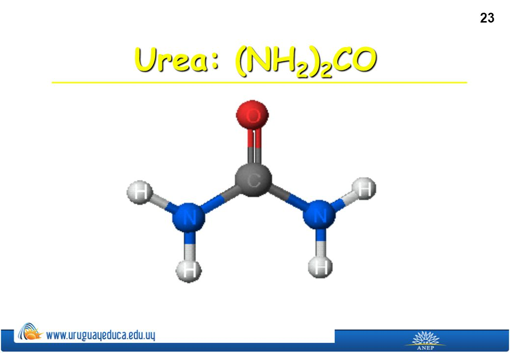 Urea: (NH2)2CO