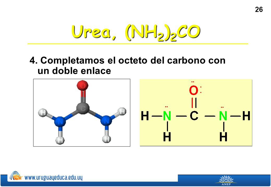 Urea, (NH2)2CO 4. Completamos el octeto del carbono con un doble enlace
