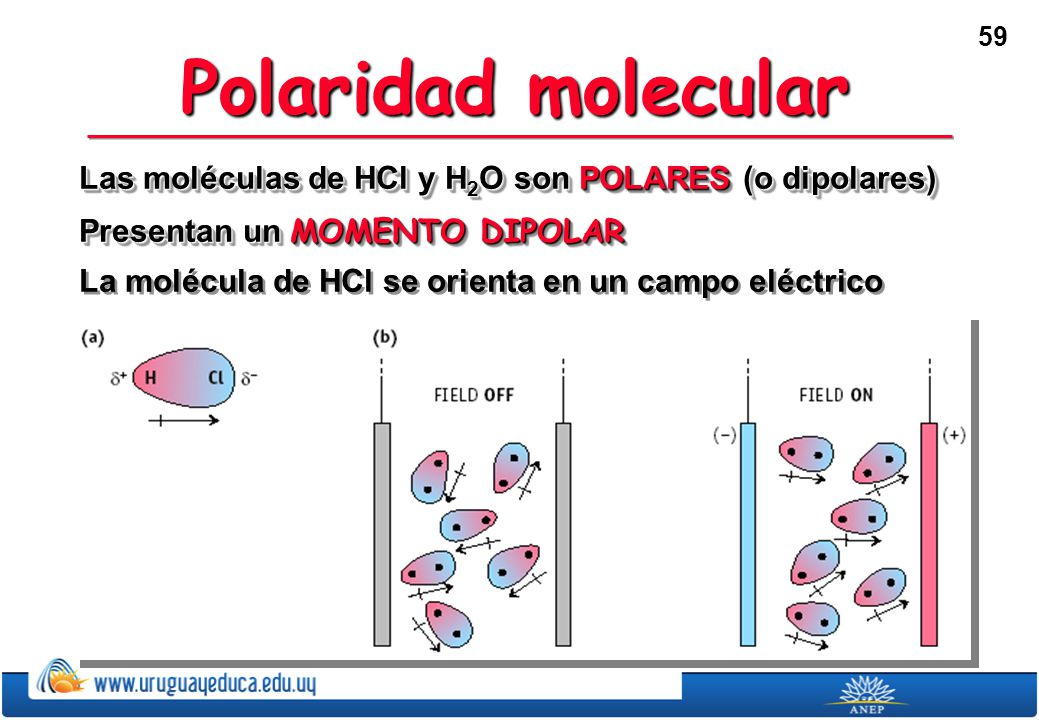 Polaridad molecular Las moléculas de HCl y H2O son POLARES (o dipolares) Presentan un MOMENTO DIPOLAR.