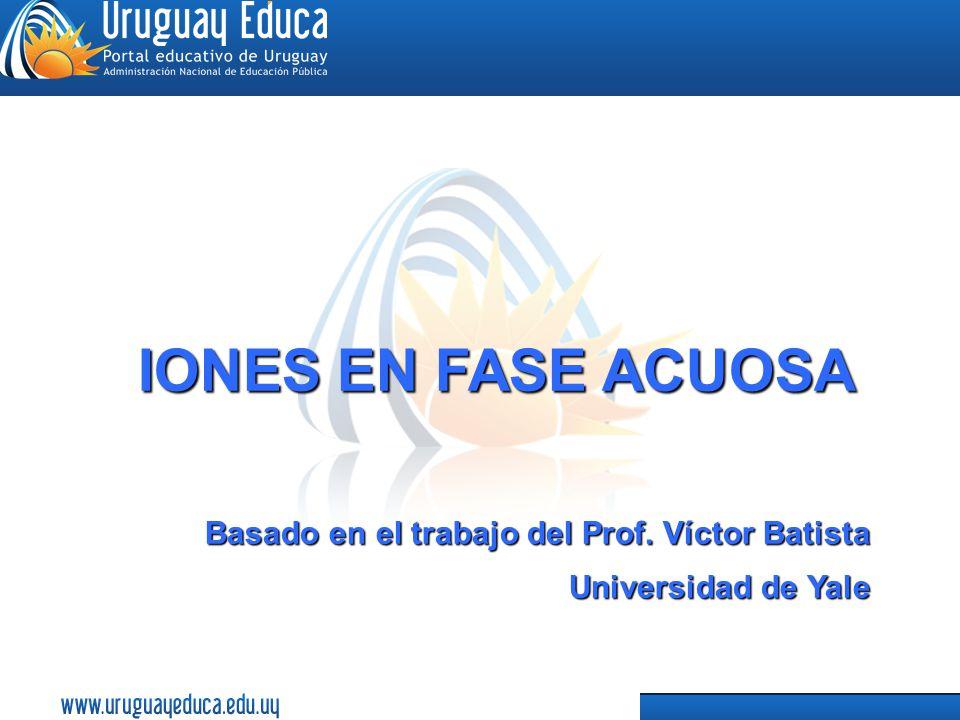 IONES EN FASE ACUOSA Basado en el trabajo del Prof. Víctor Batista