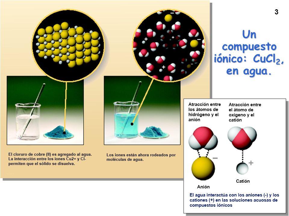 Un compuesto iónico: CuCl2, en agua.