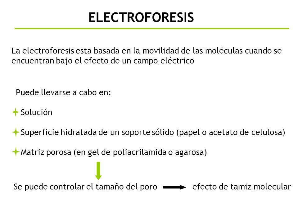 ELECTROFORESIS La electroforesis esta basada en la movilidad de las moléculas cuando se encuentran bajo el efecto de un campo eléctrico.