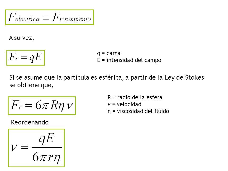A su vez, q = carga. E = intensidad del campo. Si se asume que la partícula es esférica, a partir de la Ley de Stokes se obtiene que,