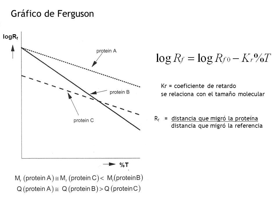 Gráfico de Ferguson logRf Kr = coeficiente de retardo
