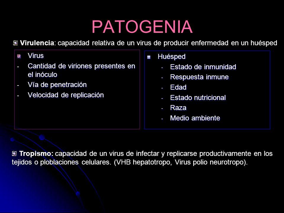 PATOGENIA Virulencia: capacidad relativa de un virus de producir enfermedad en un huésped. Virus. Cantidad de viriones presentes en el inóculo.