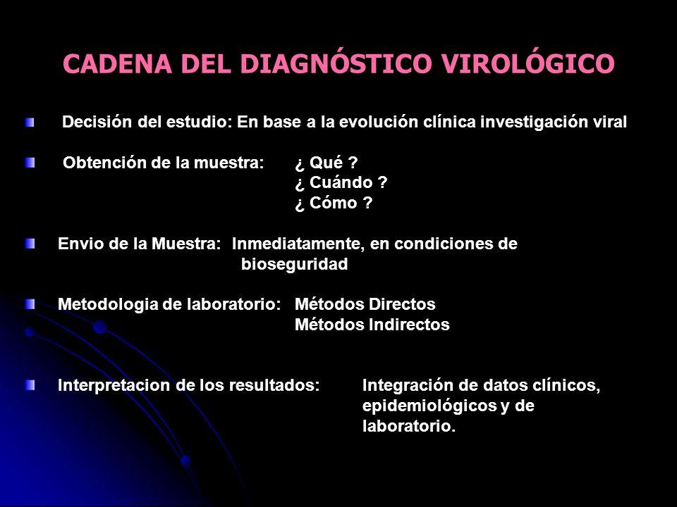 CADENA DEL DIAGNÓSTICO VIROLÓGICO