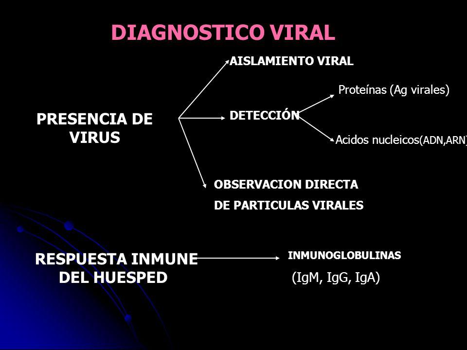 DIAGNOSTICO VIRAL PRESENCIA DE VIRUS Acidos nucleicos(ADN,ARN)