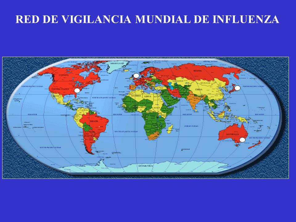 RED DE VIGILANCIA MUNDIAL DE INFLUENZA