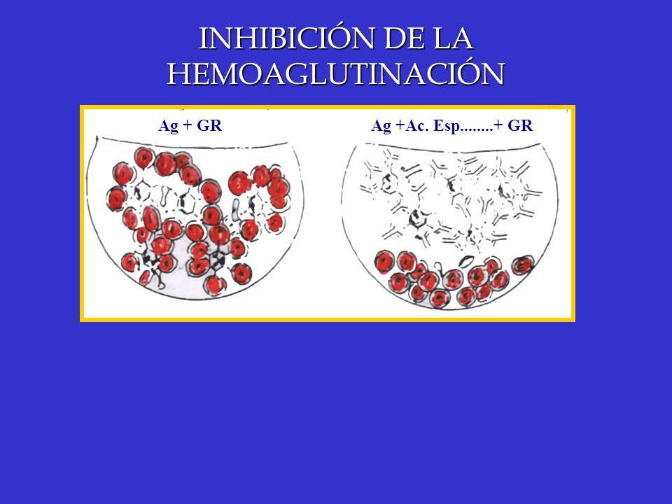 INHIBICIÓN DE LA HEMOAGLUTINACIÓN