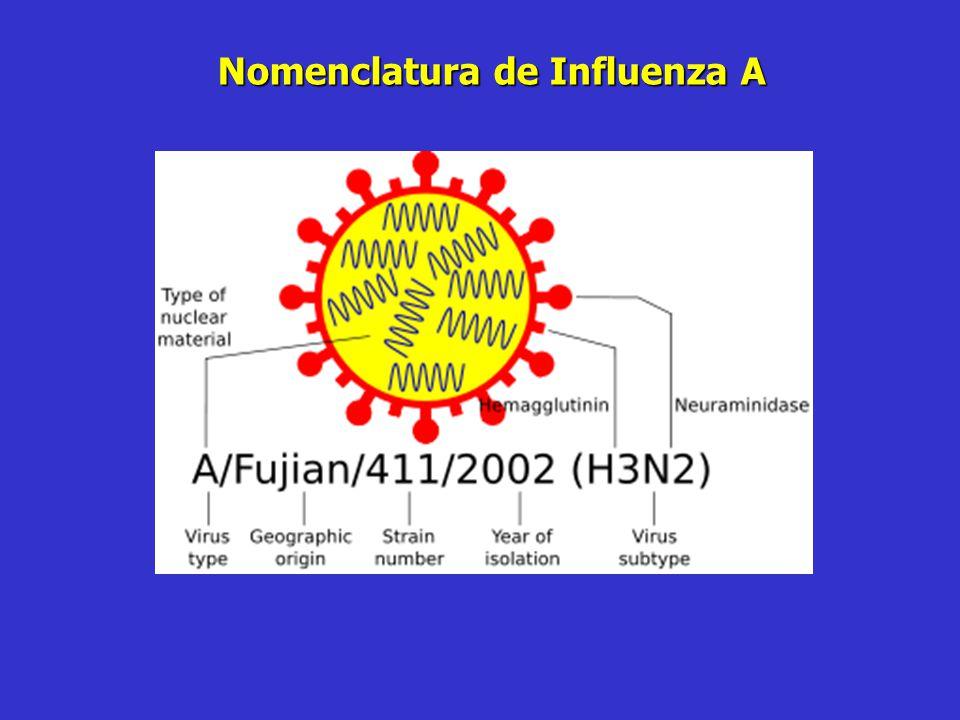 Nomenclatura de Influenza A