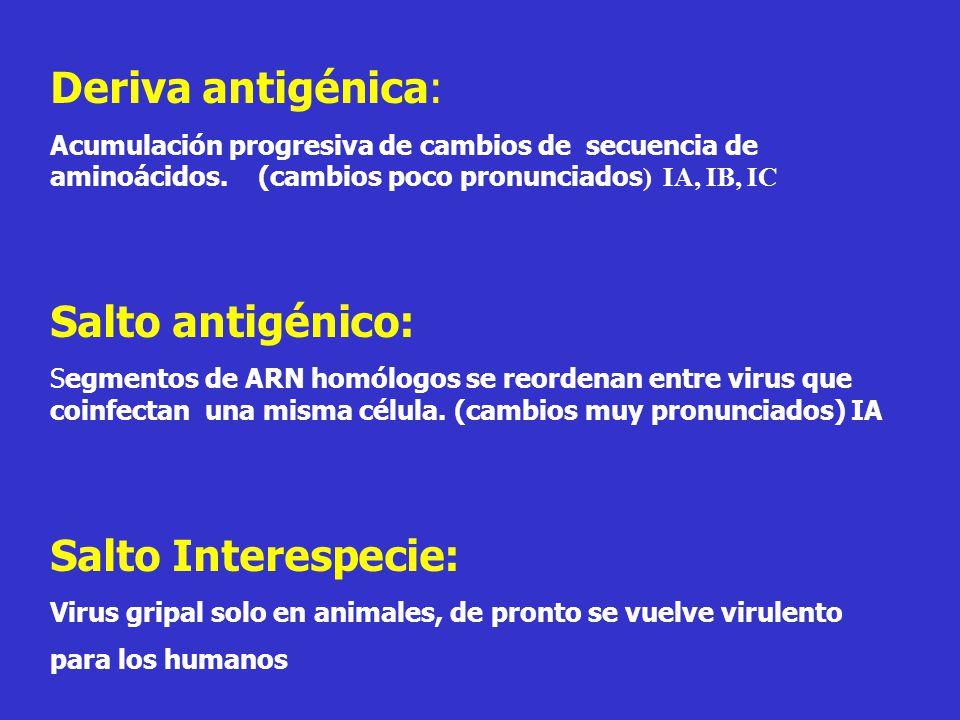 Deriva antigénica: Salto antigénico: Salto Interespecie: